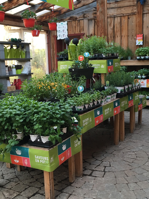 Centre_Jardin_Rossignol_Fines_Herbes