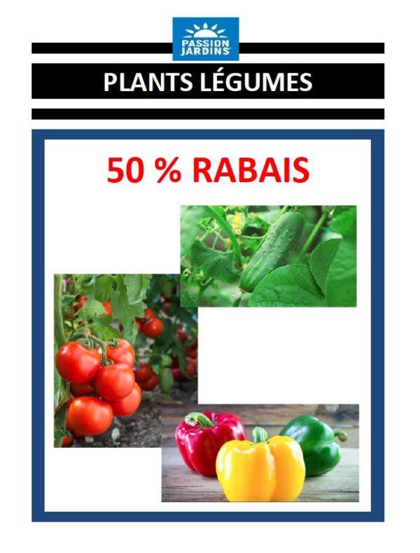 RABAIS 50 LEGUMES